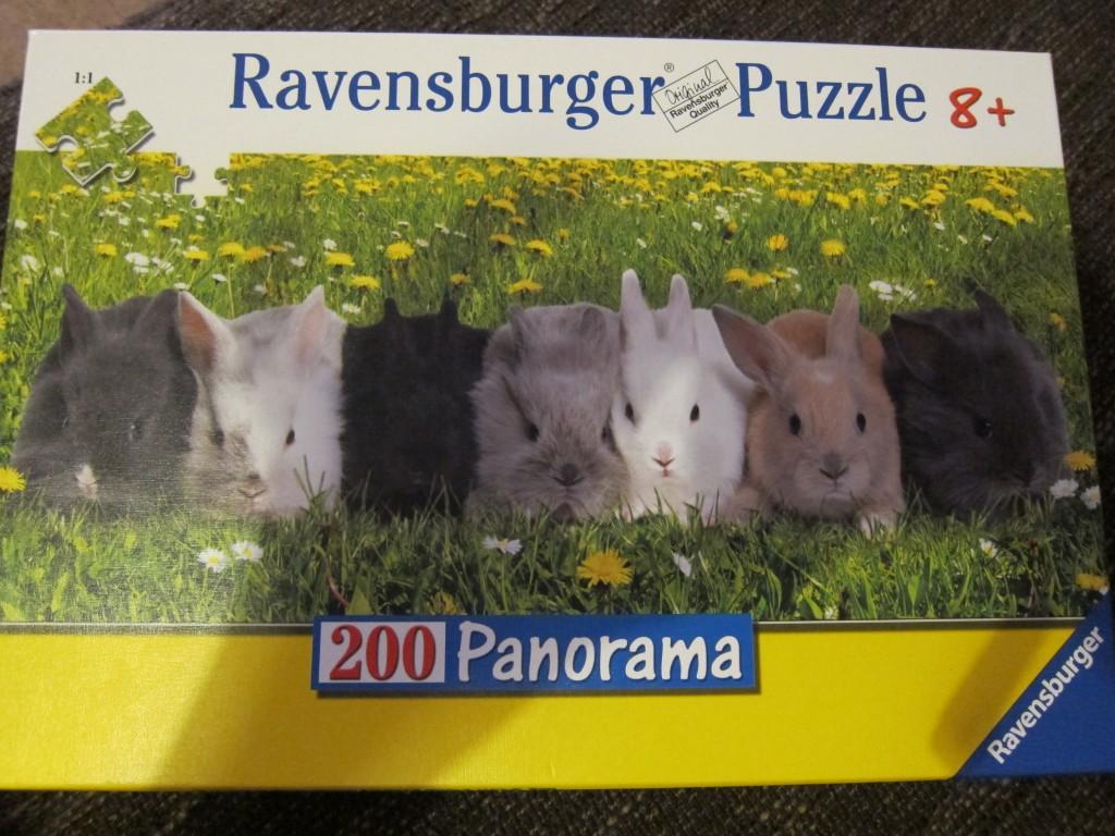 puzzle bunnies