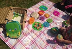 munchkin_picnic_review